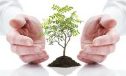 Breve excursus normativo su azione penale a carico di imprese per reati contro l'ambiente
