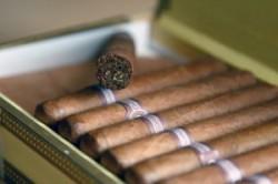 Danni da fumo: volontà libera e consapevole elide il nesso di causalità